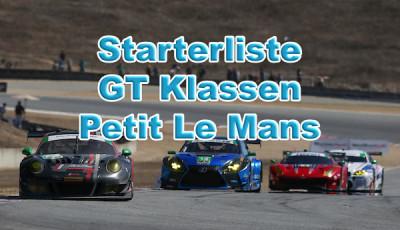 IMSA WeatherTech SportsCar Championship Starterliste Petit Le Mans 2018